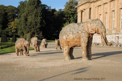 Eléphants de garde au Musée de Tervueren