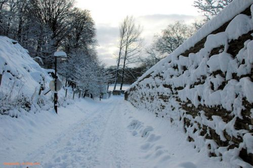 Paysages d'hiver (Rouge Cloître - 1160Bruxelles)