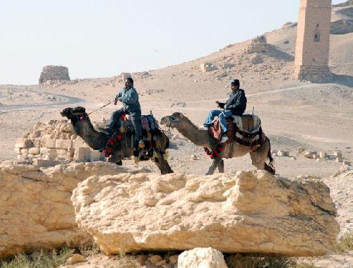 Des cavaliers autour des tombes millénaires