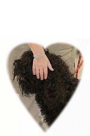 Merci Anne-Sophie, c'est ça mon rapport au chien, à mon chien...