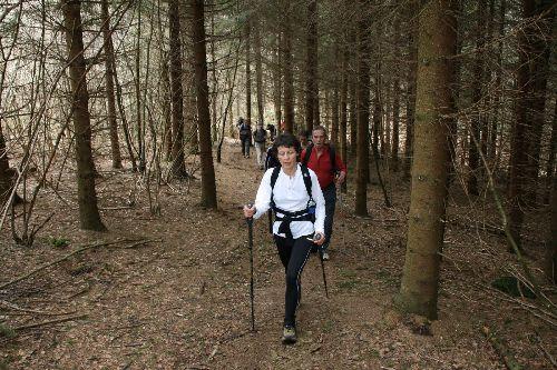 Vers le sommet du Puy de la Coquille