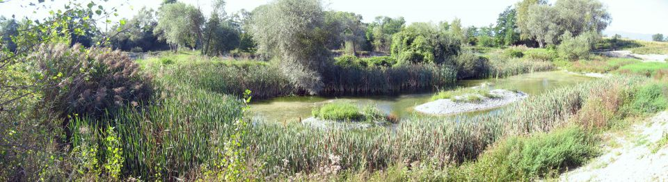 APILL - Association de Protection des Berges de l'