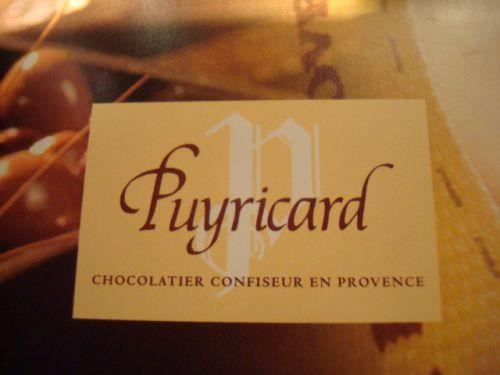 Logo Puyricard