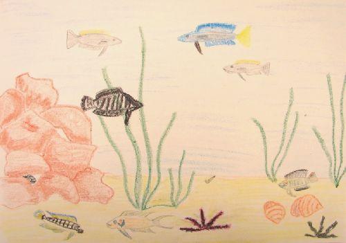 Gagnante du concours de dessin de +18 ans (automne 2009)