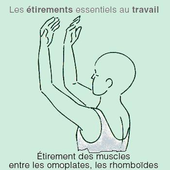 tcp_etirements_travail_2.png