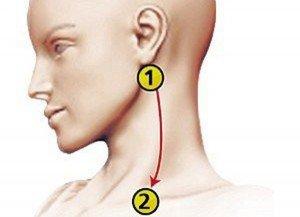 pression-artérielle-1.jpg