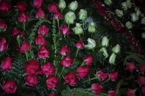 Fête des roses au Portugal Url_artimage-161774-875691-33709