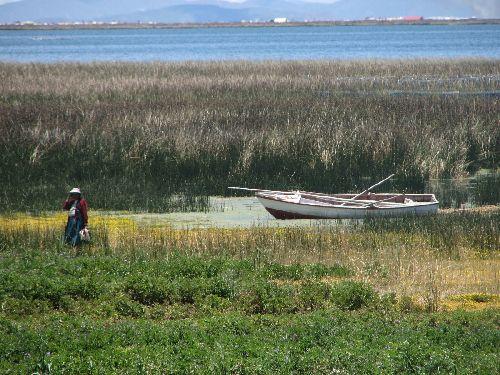 Bord du Lac Titicaca