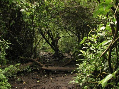 Los Chilos- Ballade à la vallée de \