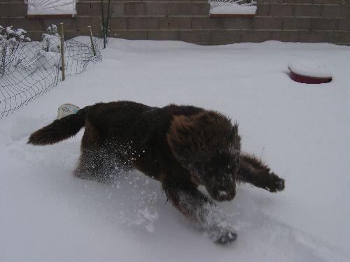 J\'adore la neige !