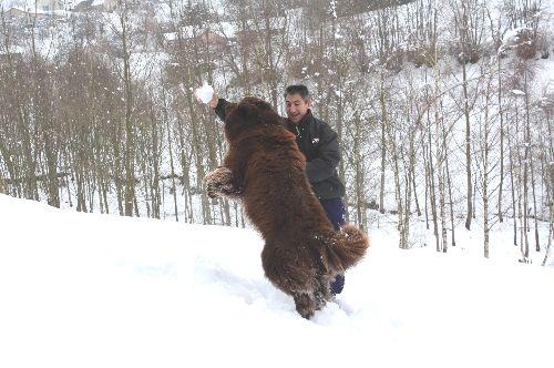 Beau saut de Brasko !