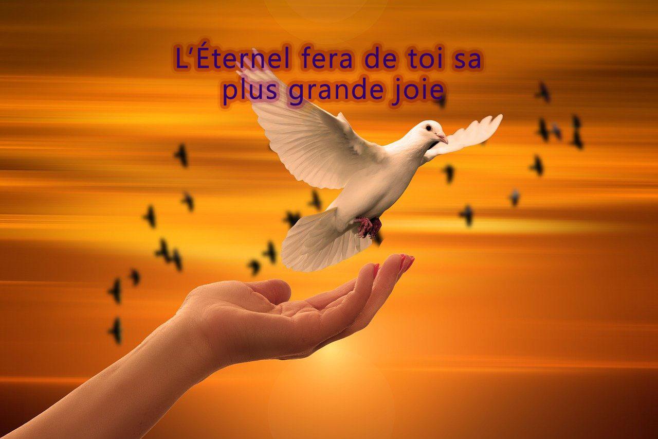 L\\\'Eternel fera de toi sa plus grande joie