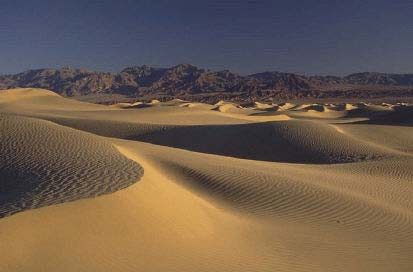 signesdevie_1881636664_desert.jpg