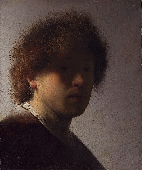 500px-Self-portrait_(1628-1629)_by_Rembrandt.jpg