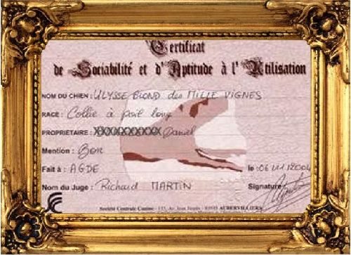 Certificat de Sociabilité et d'Aptitude à l'Utilisation