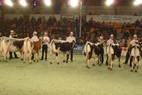 EUROGENETIQUE 2008