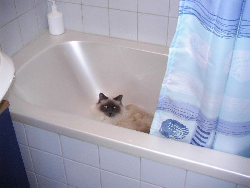 yuna dans la baignoire