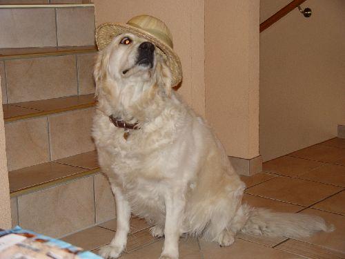 nala et son chapeau