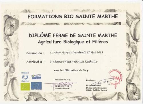 Diplome Sainte-Marthe (640x466).jpg