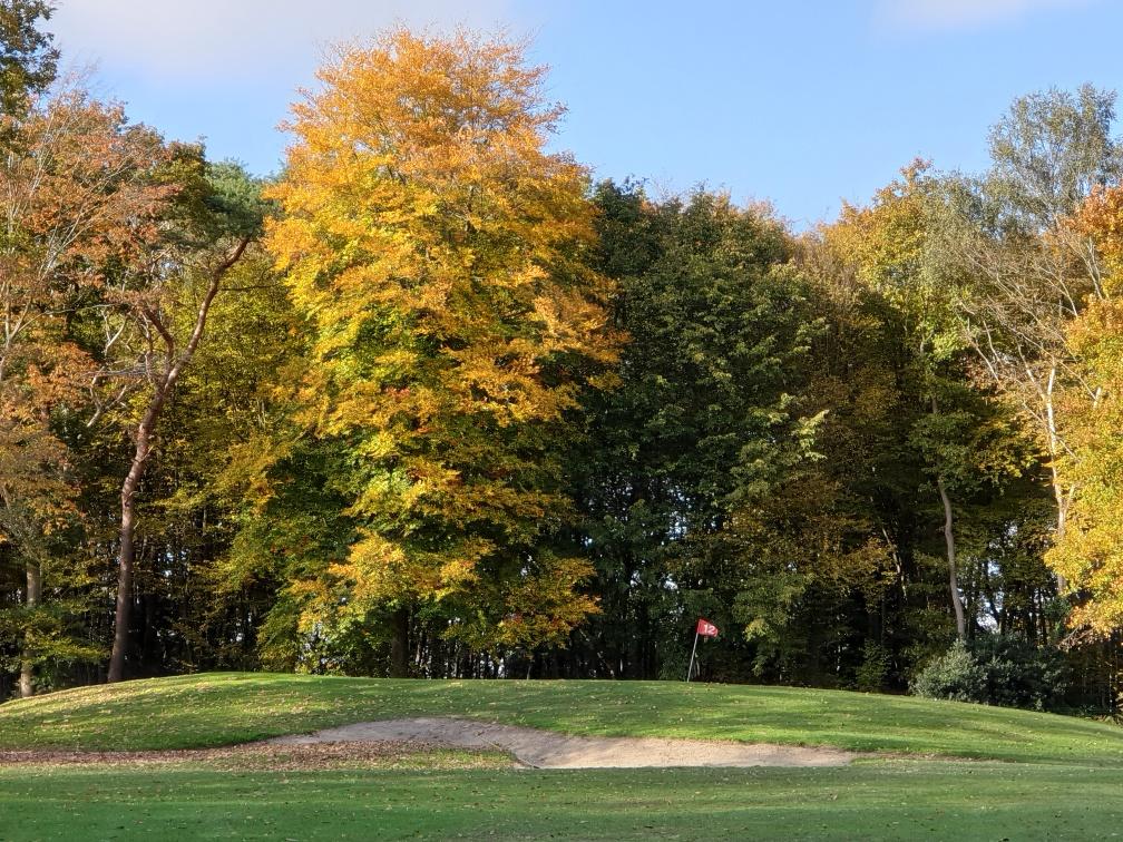 photo golf 5.jpg