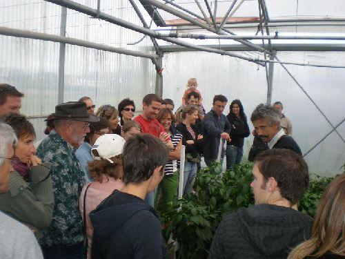Armel explique la différence entre les poivrons verts et les rouges