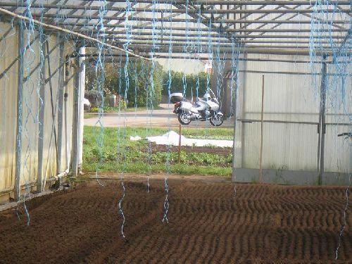Dans quelques semaines les plants de tomates seront ici
