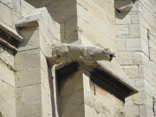 Narbonne - Gargouille