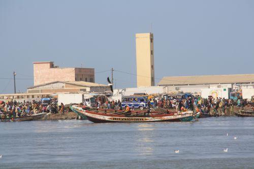 Senegal Saint Louis marché aux poissons