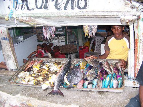 Vente de poissons