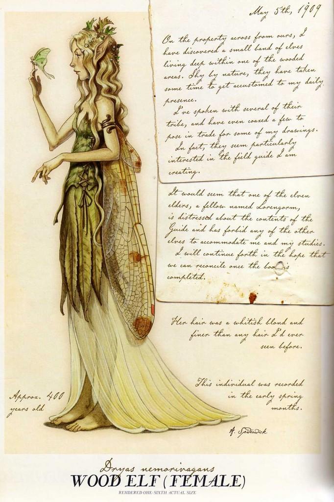 Wood elf ( female)