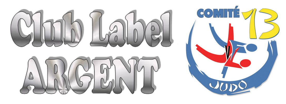 Logo CD13 label argent H.jpg