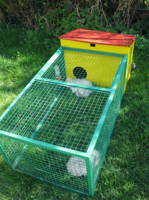 Cage avec un couple