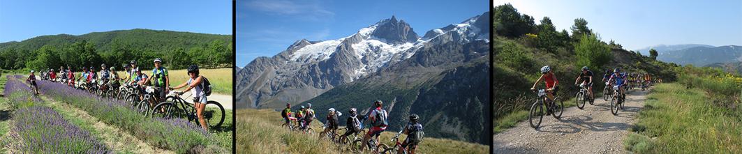 Comité Regional Auvergne-Rhône Alpes de Cyclotourisme