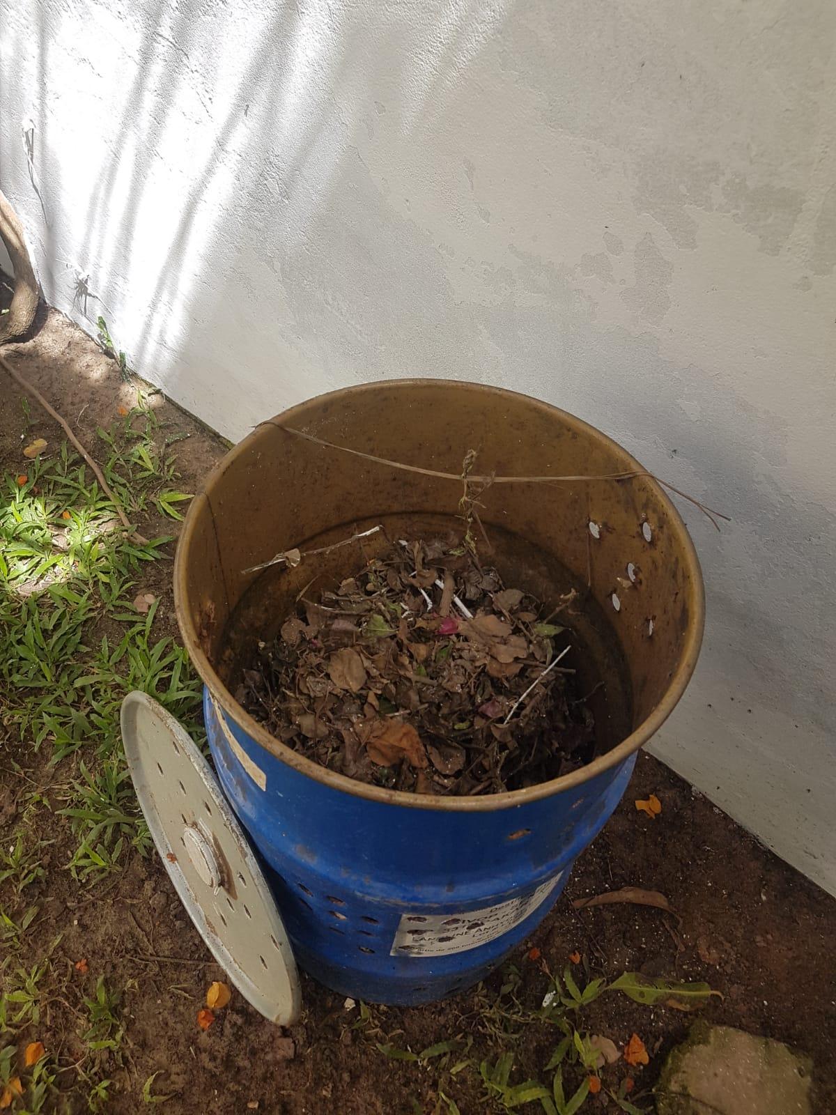 compost 1.jpeg