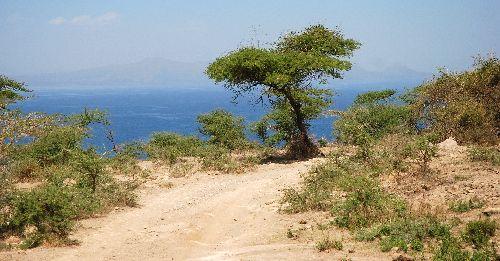 Route pour descendre au Lac Shalla