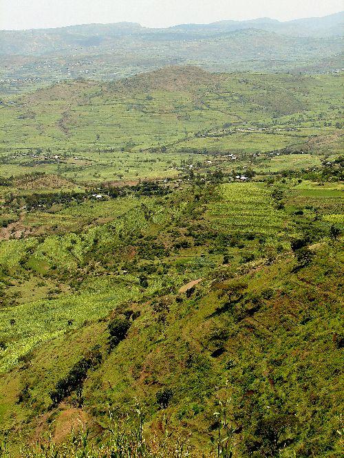Paysage autour de Dire Dawa-Sept 09