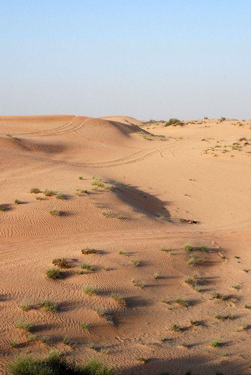 Désert-Emirats-Avr 09