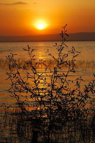 Coucher de soleil - Lac Awasa