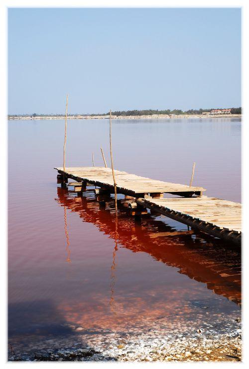 Ponton sur le lac rose