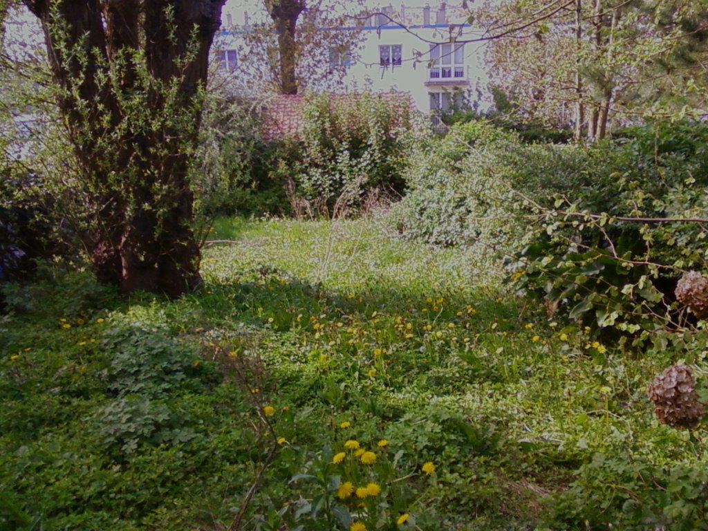 Photos entretien de jardins en cheque emploi service for Entretien jardin emploi