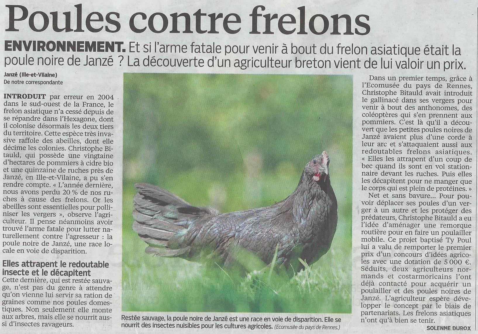 https://static.blog4ever.com/2008/03/188790/les-frelons--2-.jpg
