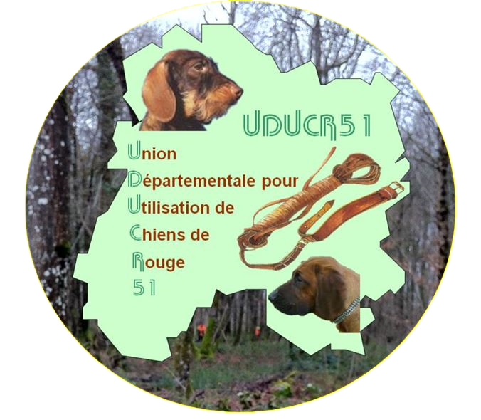 Logo_rond_Jaune_clipped.png
