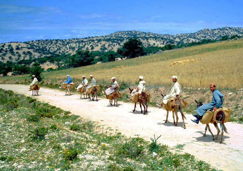 Les 4 x 4 Écologiques du Maroc Marginalisé