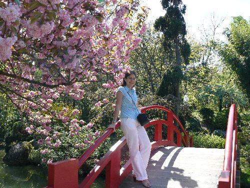 photo prise le 05-04-2008