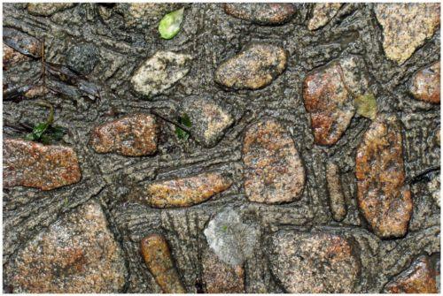 Sous mes pas 45 ( Mont Saint Michel )