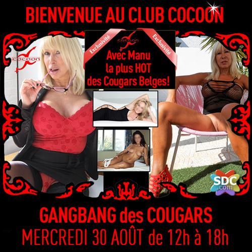 CocoonCougars.jpg