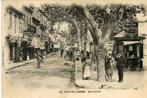 rue catina