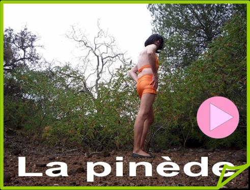 029- La pinède.jpg