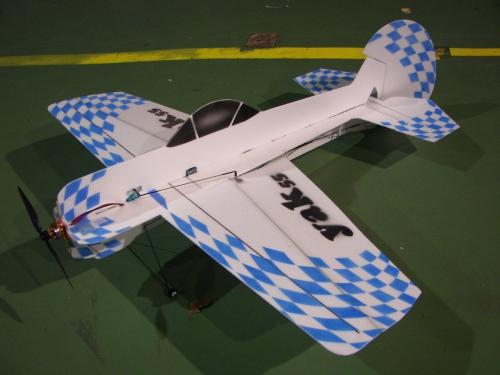 Yak 55.jpg