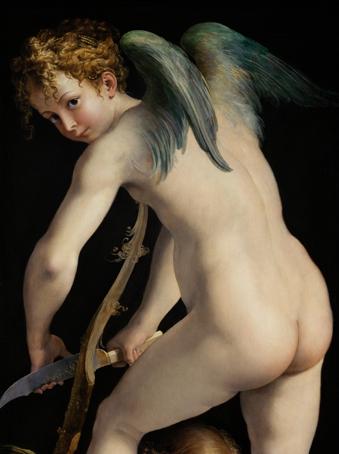 1 Parmigianino (Francesco_Mazzola)_Amour bandant son arc  coupé  bd.jpg